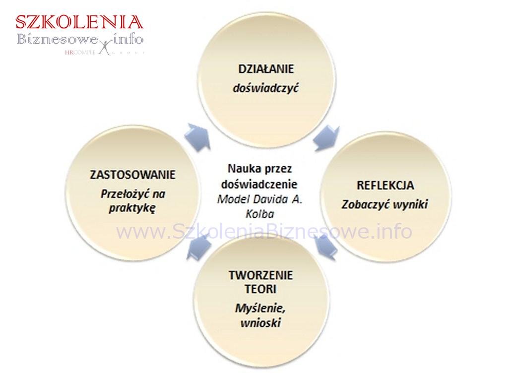 Model-Davida-Kolba_SzkoleniaBiznesowe.info